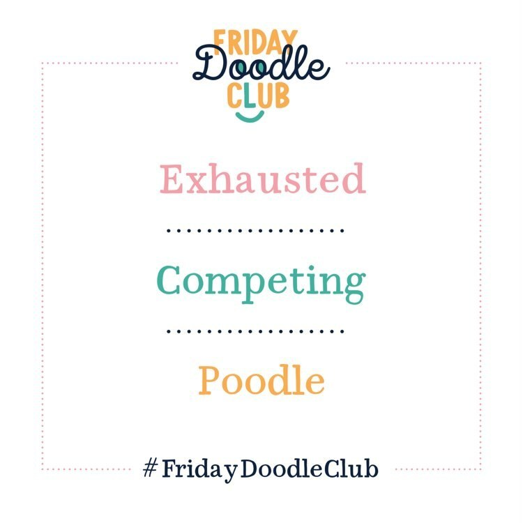 FDC-prompt_Competeing-Poodle-white